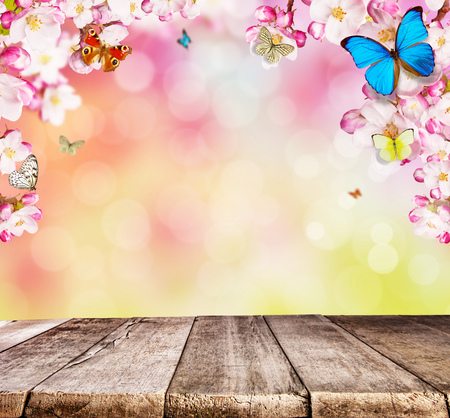 Cherry blossoms with butterflies and wooden planks, ideal for product placement