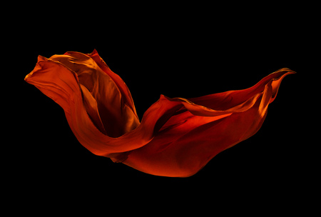 Smooth elegant red cloth separated on black background. Texture of flying fabric.