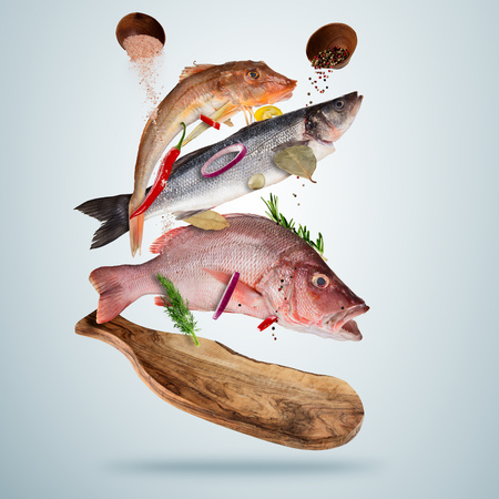 Fresh sea fish with falling spices, flying above wooden board, isolated on gray background. Food preparation, fresh meal ready for cooking. Extra high resolution