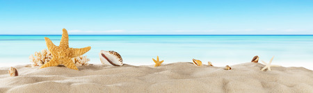 Tropical beach with sea star on sand, summer holiday background. Travel and beach vacation. Stock Photo