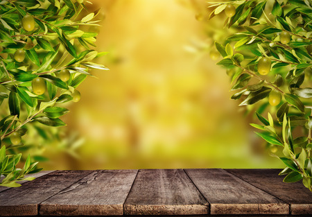 Empty old wooden planks with olive branches around, ready for product placement. Copyspace, high resolution image