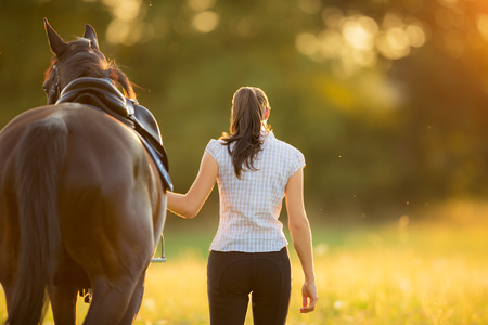 Backview of young woman walking with her horse in evening sunset light. Outdoor photography with fashion model girl. Stock Photo