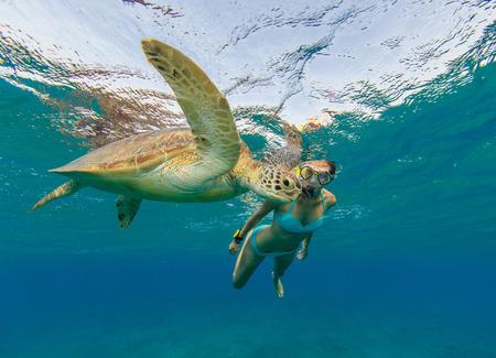 Snorkelende vrouw met karetschildpad, onderwaterfotografie. Reislevensstijl, watersport buitenactiviteiten, zwemmen en snorkelen op strandvakanties in de zomer. Stockfoto