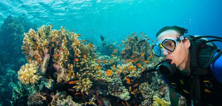 Onderwaterkoraalrif met mensenscuba-duiker die overzeese bodem onderzoekt. Tropische zee met prachtig oceaanecosysteem. Stockfoto
