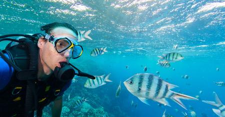 School of fish with man scuba diver exploring sealife. Tropical sea with beautiful ocean ecosystem.