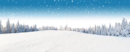 배경에 포리스트와 겨울 파노라마 풍경입니다. 아름 답 고 idillic 겨울 또는 높은 해상도에서 크리스마스 배경