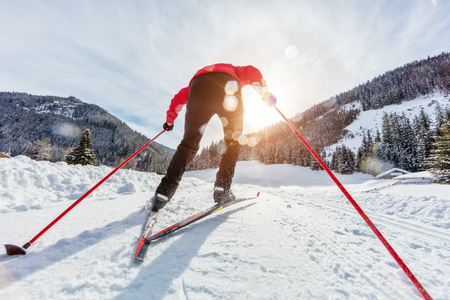 Cross-country skiing. Young man doing outdoor exercise. Winter sport and healthy lifestyle. Backside view
