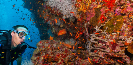 Young man scuba diver exploring coral reef, underwater activities
