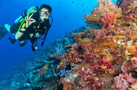 Jonge vrouwenscuba-duiker die koraalrif onderzoekt en ok teken, onderwatersport en activiteiten toont