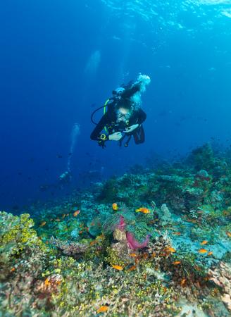 Young woman scuba diver exploring coral reef, underwater activities