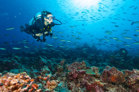 Young woman scuba diver exploring coral reef, underwater activities