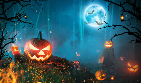 Spooky halloween pumpkins in dark forest. Stock Photo