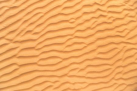 Detail of sand dune texture from desert