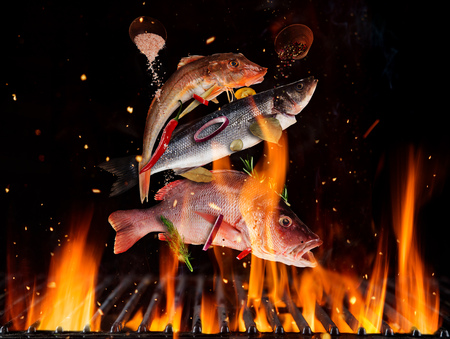 Flying sea fish above burning grill grid, isolated on black backround. Barbecue and grill concept