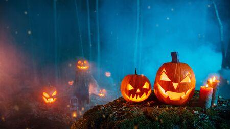 Gruselige Halloween-Kürbisse im Wald. Beängstigender Halloween-Hintergrund mit freiem Platz für Text. Standard-Bild