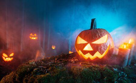 Spooky halloween pumpkins in forest.