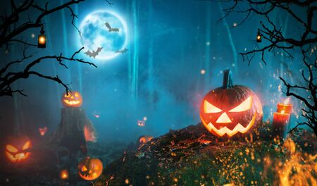Spooky halloween pumpkins in dark forest. Scary halloween background with free space for text.