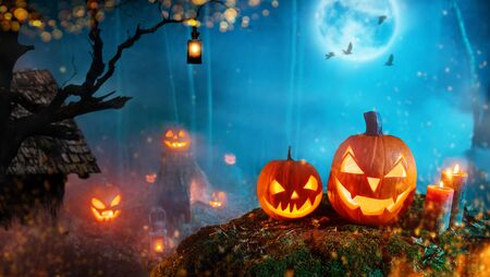 Spooky halloween pumpkins in dark mistery forest. Scary halloween background with free space for text. Imagens