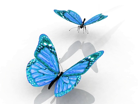 chrysalis: the beautiful butterfly with wings