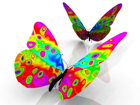 transformation: the beautiful butterfly with wings