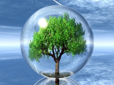 a green tree in a transparent bubble photo