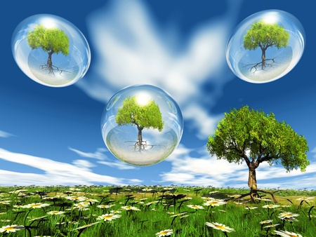 natur: trees in bubbles and natur