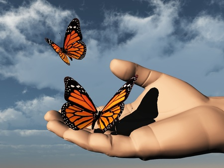 exotic butterflies: a beautifull colored butterfly in the hand Stock Photo
