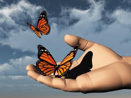 enlarged: una farfalla colorata beautifull nella mano