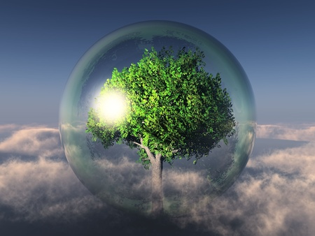 un árbol verde en una burbuja transparente