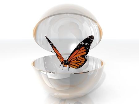 metamorfosis: la hermosa mariposa en una burbuja abierta