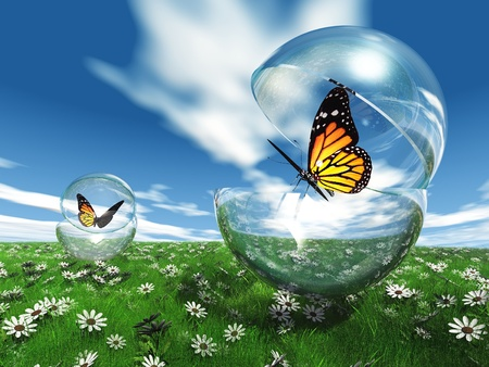 chrysalis: butterfly  in a bubble in the meadow Stock Photo