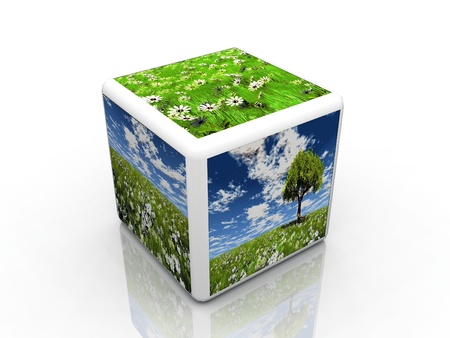 natur: il cubo natur con immagini Archivio Fotografico
