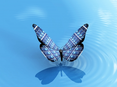 the beautiful butterfly on the water Stock Photo