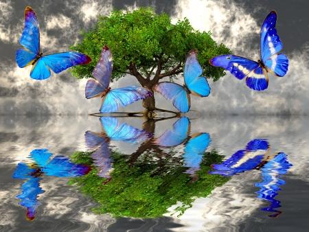 美しい蝶とツリー 写真素材