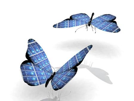 翼を持つ美しい蝶