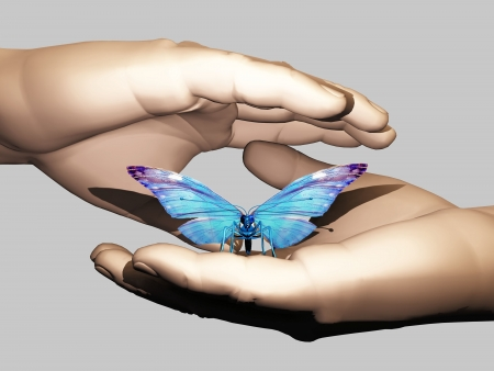 the beautiful butterfly in the hand photo