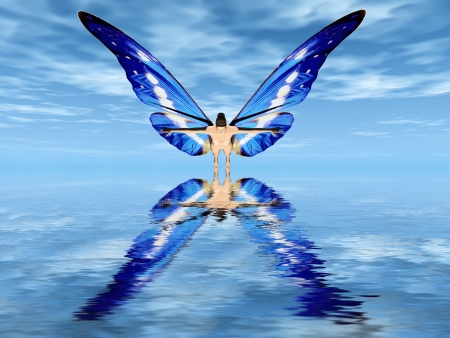 the fairy with butterfly wings photo