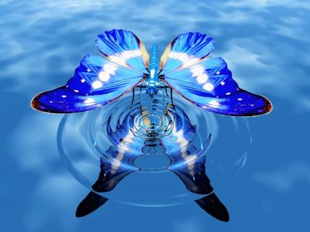 물에 아름다운 나비
