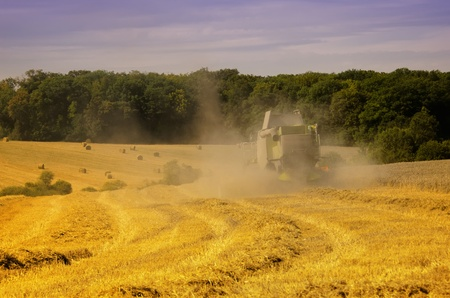 a combine harvester in a field photo