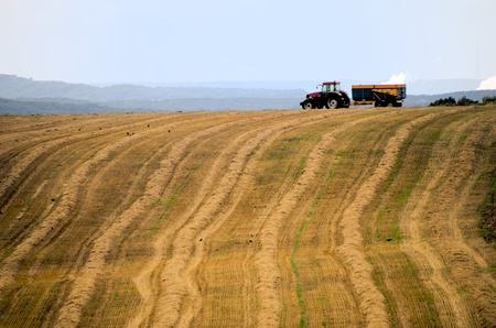 the tractor in the fields photo