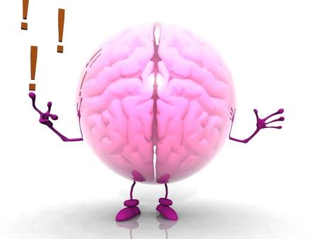 the brain photo