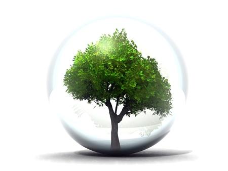 tree in a bubble Standard-Bild