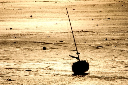 the sailboat at low tide photo