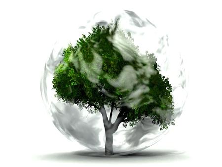 enveloping: tree and smoke Stock Photo