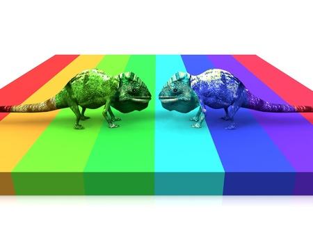chameleon and color Standard-Bild