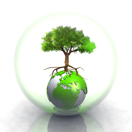 protected plant: earth and tree in a bubble Stock Photo