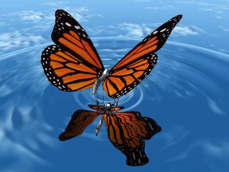 de prachtige vlinder met vleugels