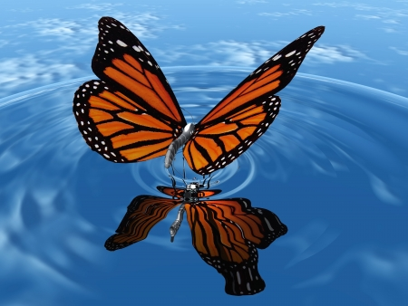 the beautiful butterfly with wings