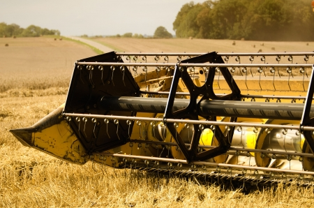 combine harvester reaps the corn Stock Photo - 15823390
