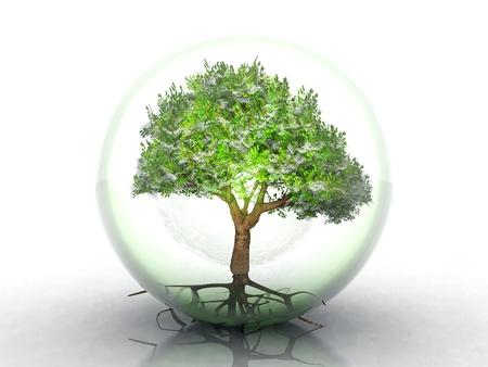 透明なバブルの緑の木